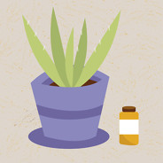 What Are Herbal Remedies for Psoriatic Arthritis? image