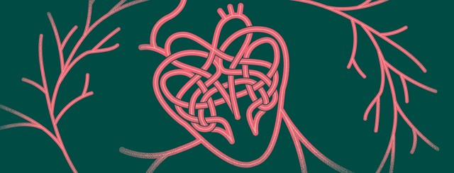 Shape of a heart and veins made by a Celtic knot.
