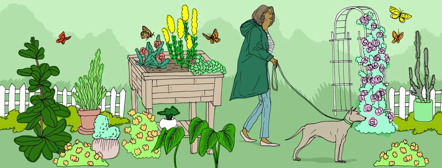 a woman walks her dog in the garden
